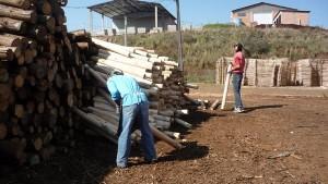 Trabalho infantil irregular e insalubre é encontrado em seis empresas do município de Mariópolis, no interior do Paraná.
