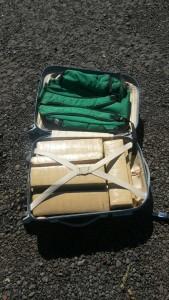 Tabletes de maconha estavam escondidos na mala do adolescente. Foto: PRF