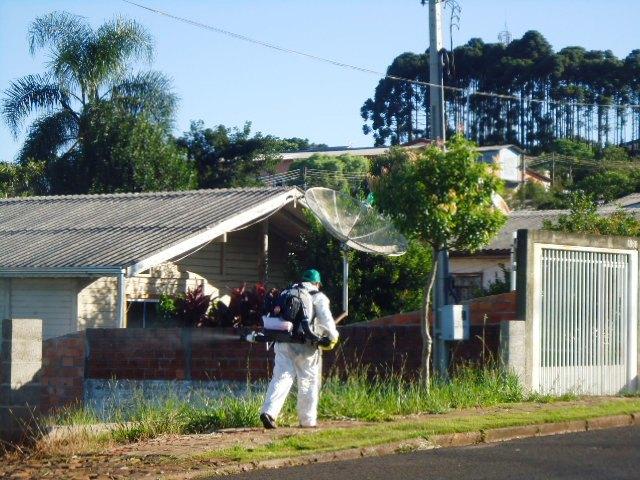 O fumacê está sendo feito nos bairros da cidade. Foto: Edson Zuconelli.
