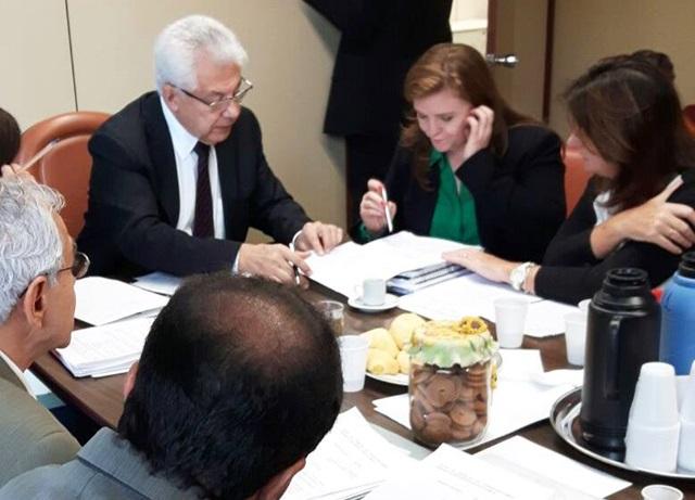 Reunião do Grupo de Trabalho da Fosfoetanolamina. Leandre é a relatora do projeto. Foto de divulgação