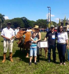 Moeda do Rosal - Campeã Vaca Adulta e Grande Campeã na ExpoLondrina