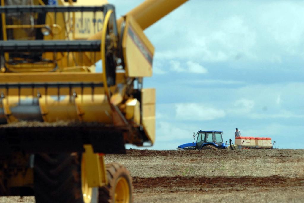 Colheita e plantação de soja no interior do estado. Foto Jonas Oliveira