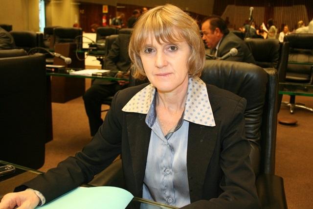 Luciana Rafagnin, coordenadora regional do PT. Foto: Arquivo