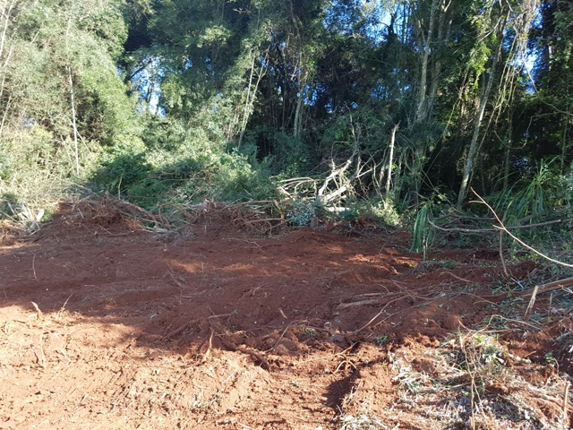 Área desmatada é  de 0.6 hectares. Foto de divulgação