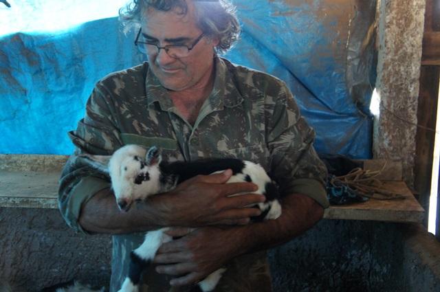 Hélio Ghizzi segura nos braços a primeira mini cabra de sua propriedade. Foto de divulgação