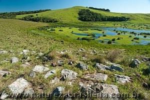 Nascentes do rio Chopim - Refúgio da Vida Silvestre dos Campos de Palmas - Palmas - PR