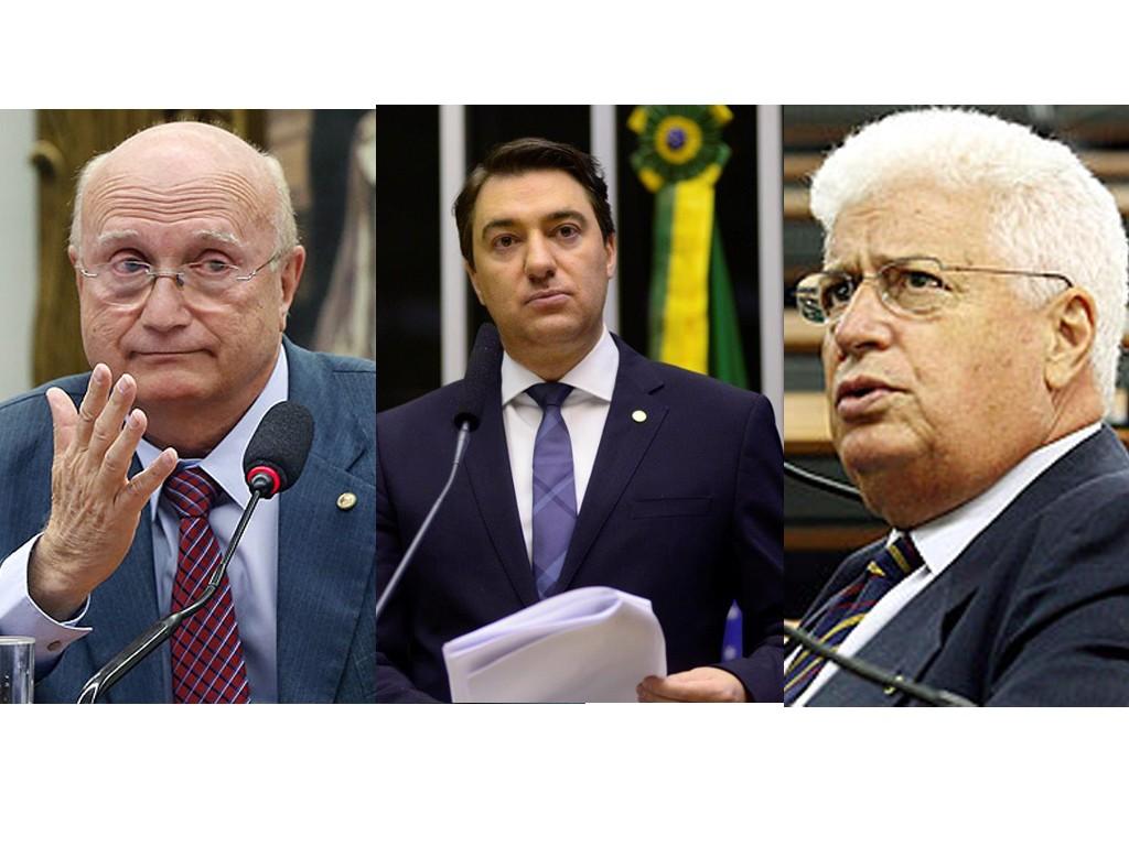 Serraglio, Giacobo e Meurer votaram para barrar a investigação.